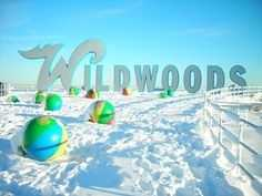 Wildwood Signs with Snow